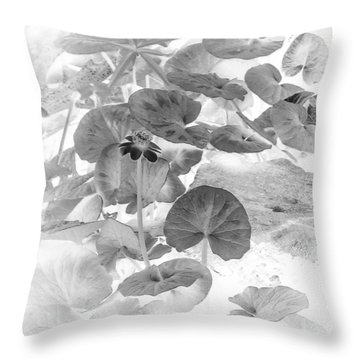 Lesser Celandine Buttercup Flower In Black And White Throw Pillow
