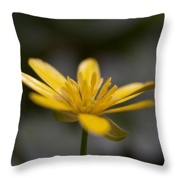 Throw Pillow featuring the photograph Lesser Celandine by Karen Van Der Zijden