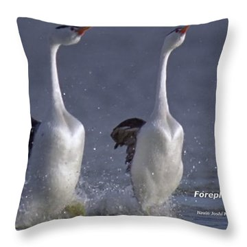 Let Humans Learn From The Nature  Foreplay Dance It Pleases Everyone Throw Pillow by Navin Joshi