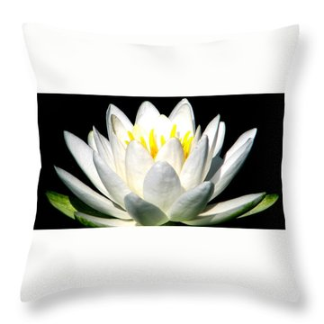 Let It Go Throw Pillow by Angela Davies