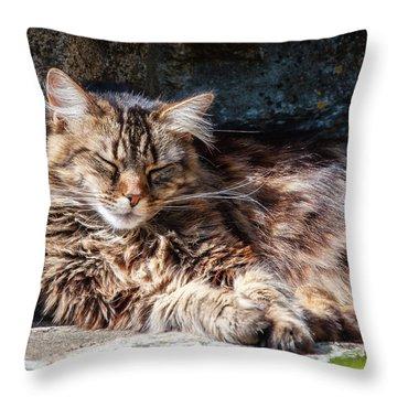 Let Me Sleep... Throw Pillow