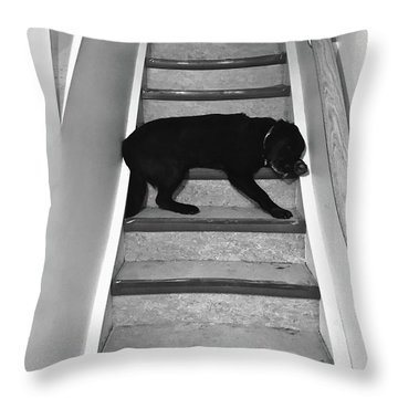 Let Sleeping Dogs Lie Where They Will 2 Throw Pillow