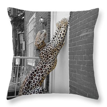 Let The Cat In Throw Pillow