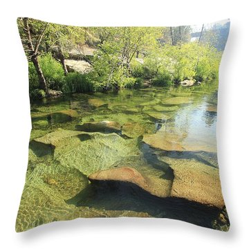 Throw Pillow featuring the photograph Let The Light Consume You by Sean Sarsfield
