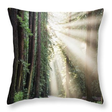 Let The Sun Shine Throw Pillow