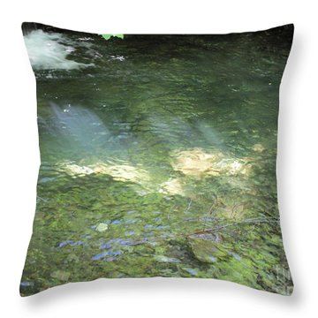 Throw Pillow featuring the photograph Let The Sunshine by Marie Neder
