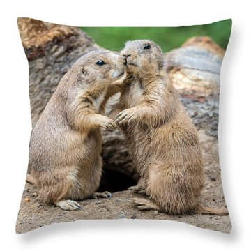 Let's Fall In Love Throw Pillow