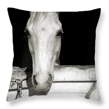 Lets Ride Throw Pillow by JAMART Photography