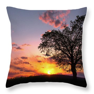 Letter To The Heart Throw Pillow