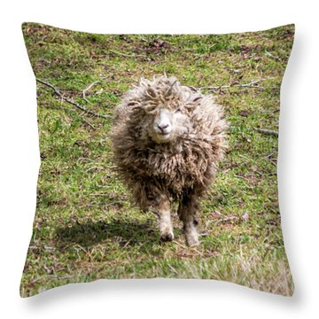 Lettie The Leicester Longwool Throw Pillow