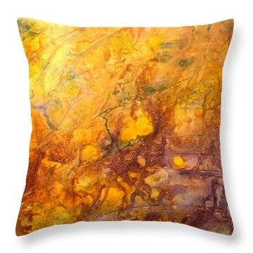 Letting The Sunshine In Throw Pillow