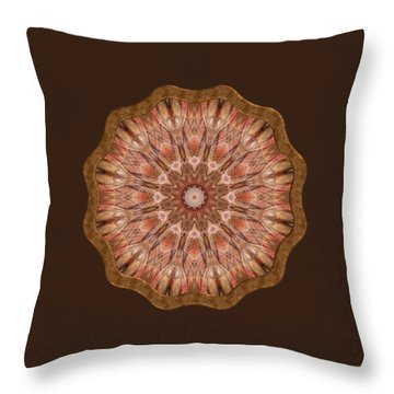 Ley Lines Throw Pillow
