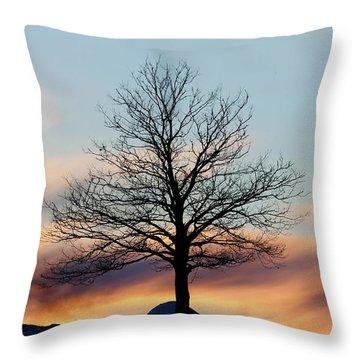 Liberty Tree Sunset Throw Pillow