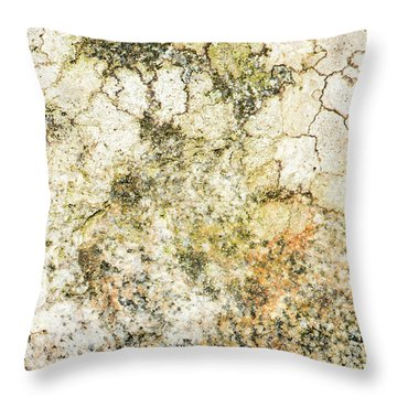 Throw Pillow featuring the photograph Lichen On A Stone, Background by Torbjorn Swenelius