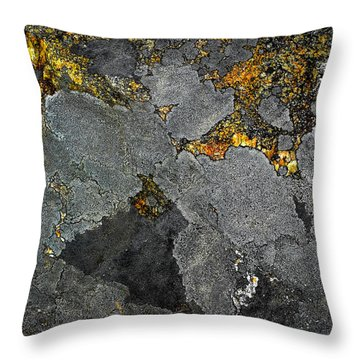 Lichen On Granite Rock Abstract Throw Pillow
