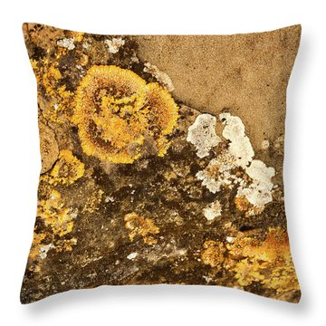 Throw Pillow featuring the photograph Lichen On The Piran Walls by Stuart Litoff