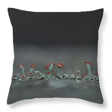 Lichen-scape Throw Pillow