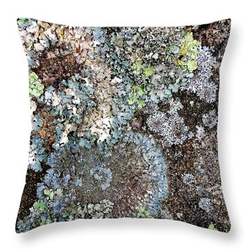 Throw Pillow featuring the digital art Lichens by Julian Perry