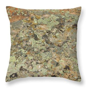 Lichens On Boulder Throw Pillow
