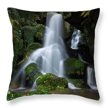 Lichtenhain Waterfall Throw Pillow