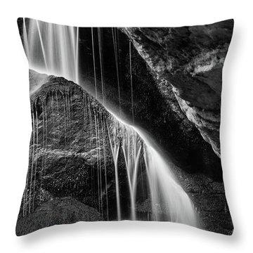 Lichtenhain Waterfall - Bw Version Throw Pillow