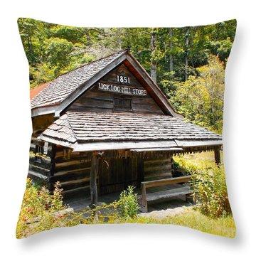 Lick Log Vintage Store Throw Pillow
