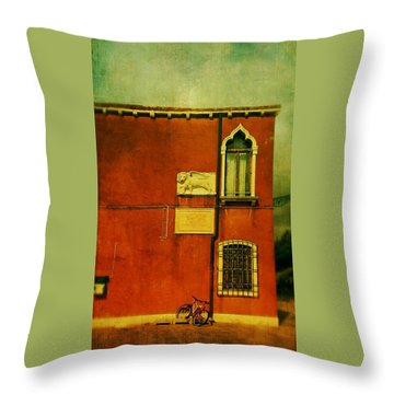 Throw Pillow featuring the photograph Lido Lion by Anne Kotan