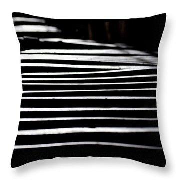 Lids Throw Pillow by David Gilbert