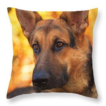 Liesl  Throw Pillow