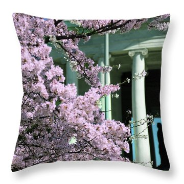 Throw Pillow featuring the photograph Life And Liberty by Mitch Cat