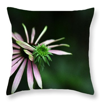 Throw Pillow featuring the photograph Life Begins by Wanda Brandon