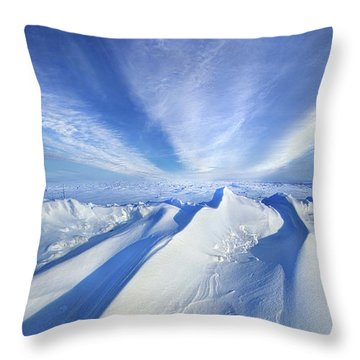 Throw Pillow featuring the photograph Life Below Zero by Phil Koch