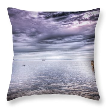 Throw Pillow featuring the photograph Life Coach by Spencer McDonald