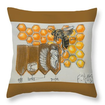 Life Cycle Of A Bee  Throw Pillow