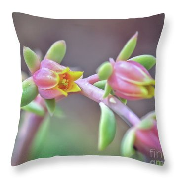 Throw Pillow featuring the photograph Life Delights In Life by Kerri Farley