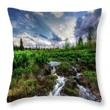 Life Giving Stream Throw Pillow