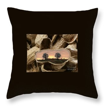 Life In A Nutshell Throw Pillow