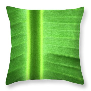 Life Lines Throw Pillow