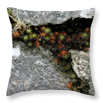 Life Lived In The Cracks Throw Pillow