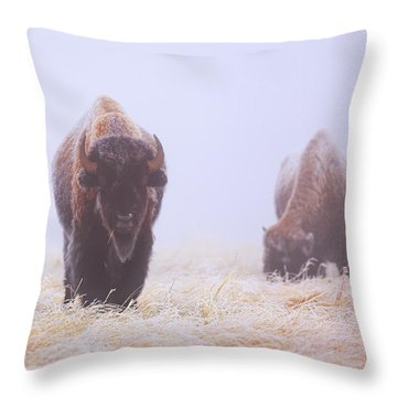 Buffalo National River Throw Pillows