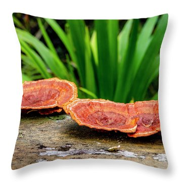 Life On A Log Throw Pillow
