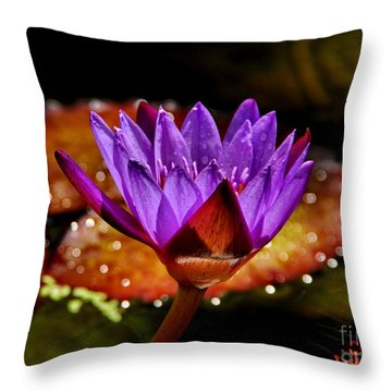 Life On The Pond 2 Throw Pillow