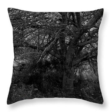 Life. Throw Pillow by Shlomo Zangilevitch