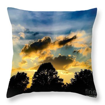 Life With Out Words Throw Pillow