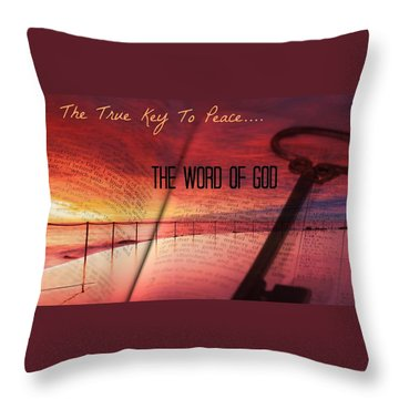 Lifeq416 Throw Pillow
