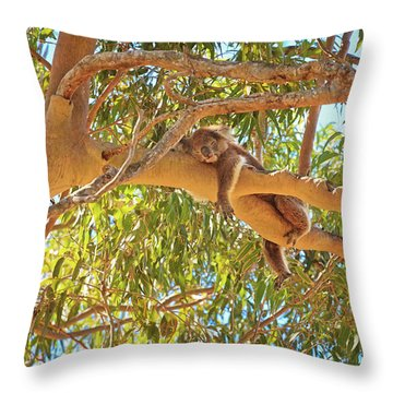 Life's Hard, Yanchep National Park Throw Pillow by Dave Catley