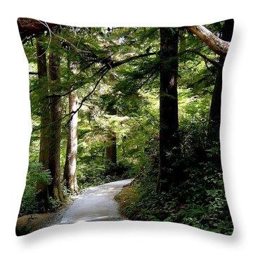 Life's Pathway Throw Pillow