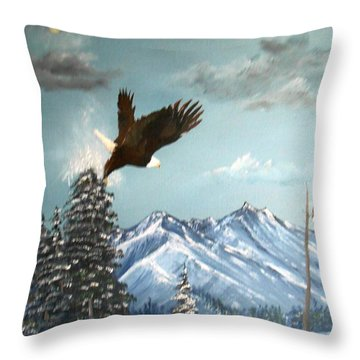 Lift Off Throw Pillow by Al  Johannessen