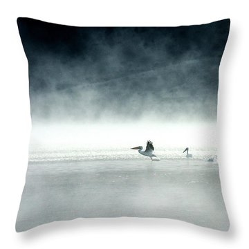 Lift-off Throw Pillow