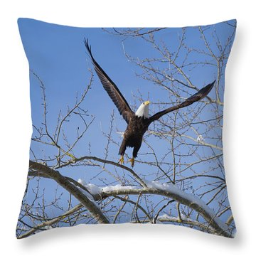 Throw Pillow featuring the photograph Lift Off by Jim  Hatch